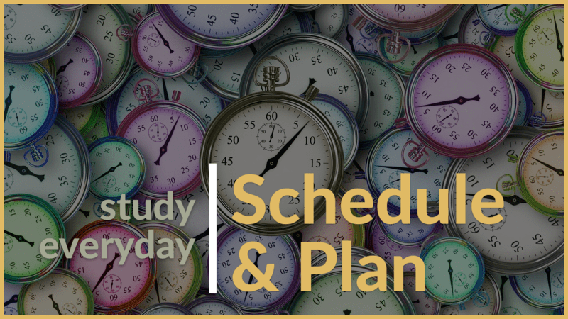 schedule and plan to study every day