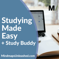 studying made easy with study buddy